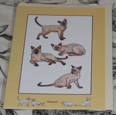 SIAMESE CAT GREETINGS CARD with pictures of the breed